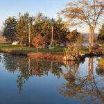 Northern Landscaping, Lawn Maintenance, Landscaping, Pond Landscaping, Backyard Pond