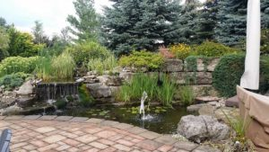 Northern Landscaping, Lawn Maintenance, Tree Service , Sprinkler Repair, Landscaping, Lawn Service, Bush Trimming